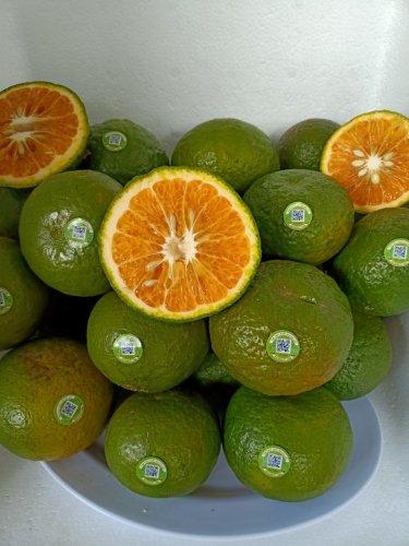 trái cây ngon tại bảo lộc